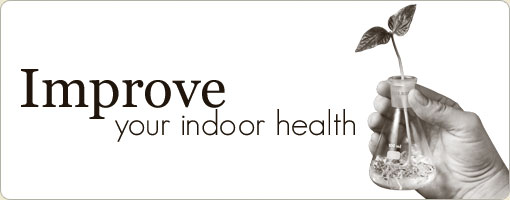 Improve Your Indoor Health
